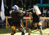 Fighting knight — Stock Photo