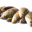 Fish — Stock Photo #23726221