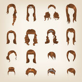 Set of female brown hair — Stockvektor