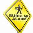 Burglar alarm prevention — ストック写真