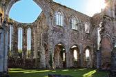 Ruines de l'abbaye aulne Belgique — Photo