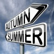 Autumn summer — Stock Photo