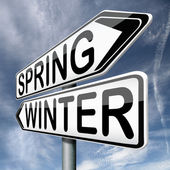 Spring winter — Stock Photo