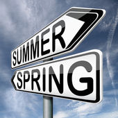 Summer spring — Stock Photo