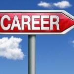 Career road sign arrow — Stock Photo #26390491