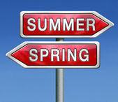 Summer spring — Stock Photo