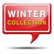 Winter collection — Stock Photo #33777197