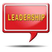Leadership — Стоковое фото