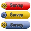 Survey button — Stock Photo