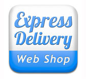 Express delivery web shop — 图库照片