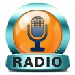 Radio icon — Stock Photo #46718297