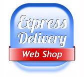 Expreslevering webshop — Stockfoto