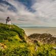 Cape Enrage Lighthouse — Stock Photo