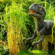 Allosaurus — Stock Photo #13491366