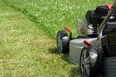Gümüş çim biçme makinesi. — Stok fotoğraf