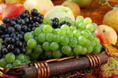Basket of ripe fruits. — Stock Photo