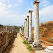 Ancient columns. - Stock Photo