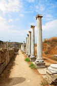 Ancient columns. — Stock Photo