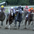 Jimmy Creed Wins The 2012 Malibu Stakes — Stock Photo