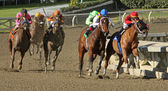 Book Review Wins 2012 The La Brea Stakes — Stock Photo