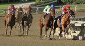 Book Review Wins 2012 The La Brea Stakes — Stock Photo