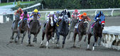 Jimmy Creed Wins The 2012 Malibu Stakes — Stock Photo