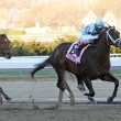 Verrazano Wins The Wood Memorial — Stock Photo