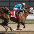 Withgreatpleasure Wins The Ruffian Stakes - Stock Photo