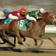 Stock Photo: Declan's Warrior Wins Bay Shore Stakes