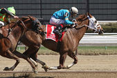 Withgreatpleasure Wins The Ruffian Stakes — Stock Photo