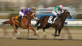 Close Hatches Wins The Gazelle Stakes — Stock Photo