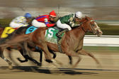 Declan's Warrior Wins The Bay Shore Stakes — Stock Photo