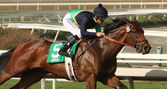"Jockey Mike Smith and ""Cherubim"" in San Vincente Stakes — Foto Stock"