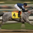 Stock Photo: Motion Blur Racing Horse