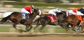 Winning The San Carlos Stakes — Stock Photo