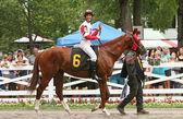 Internationally Acclaimed Jockey Lanfranco Dettori — Stock Photo