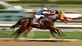 抽象的なぼかしの馬のレース — ストック写真