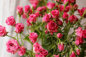 Bouquet of red roses — Stock fotografie