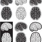 Brain set — Stock Vector #18468063