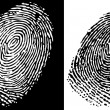 Fingerprint — Stock Vector #18468073