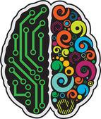 Insan beyninin — Stok Vektör