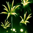 Green and yellow fireworks — Zdjęcie stockowe