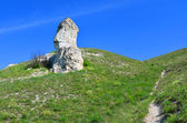 "Nature reserve ""Divnogorie"", Voronezh region, Russia — Stock Photo"