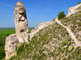 "Cretaceous outcrops in narure reserve ""Divnogorie"", Russia — Stock Photo"