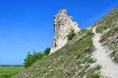 "Cretaceous outcrops in narure reserve ""Divnogorie"", Russia — Stock Photo"