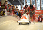 Viessmann Bobsleigh and Skeleton World Cup on February 16, 2013 in Sochi, Russia. — Foto de Stock