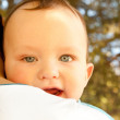 Portrait of a baby on the background of the fall — Stock Photo #12685648