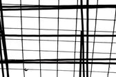 Black grid on white background — Stock Photo