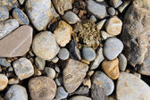 Pebble stones great as a background — Stock Photo