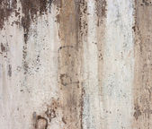 Grunge cement wall:can be used as background — Photo